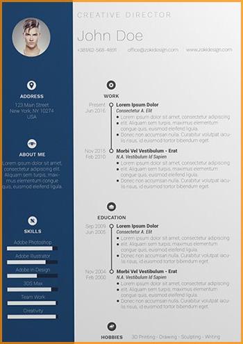 modelo curriculum vitae cronologico simple