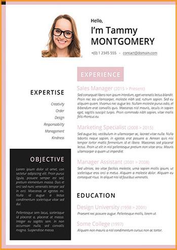 modelo curriculum rosa mixto